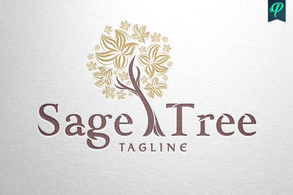 Sage Tree Logo Design Templates Creative Market