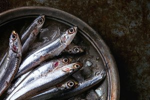 Raw fresh anchovies fishes