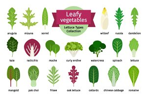 Salad leaves set