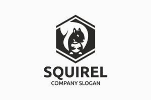 Squirel