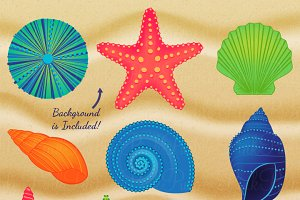 Shells & Sand Clipart & Vectors
