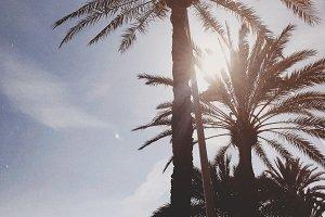 Beautiful Barcelona beach