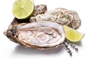 Raw oyster and lemon isolated