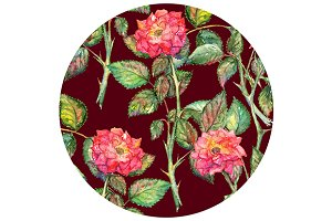 Watercolor pink roses circle pattern