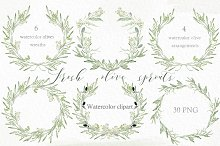 Olive sprouts wreath branch clipart