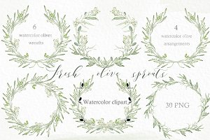 Olive sprouts wreaths branch clipart