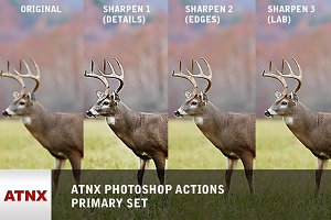 ATNX Photoshop Actions (Primary Set)