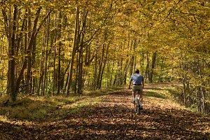 Senior man cycling on forest trail