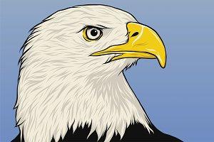 Amercian Eagle