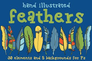 Hand Drawn Feather Clipart