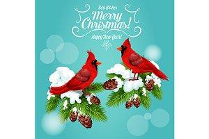Christmas cardinal birds
