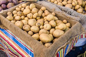 WHite potatoes at market