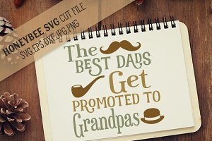Best Dads Get Promoted to Grandpas