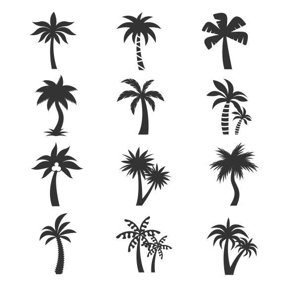 silhouette date palm tree - photo #29