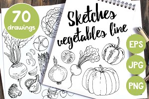 Sketches vegetables line