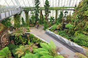 cloud garden greenhouse in Singapore