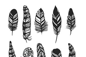 Boho feather hand drawn vector