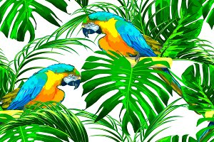 Parrots,jungle leaves pattern