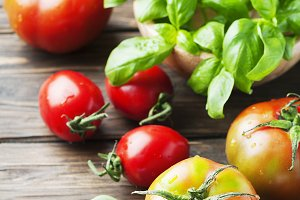 Green basil and red sweet tomato