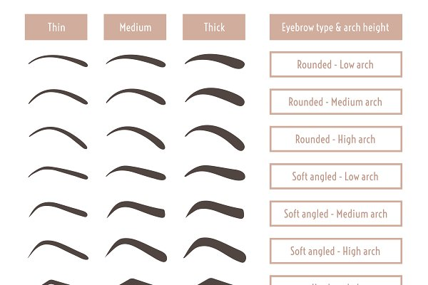 Eyebrow shapes. Various brow types. | Custom-Designed ...