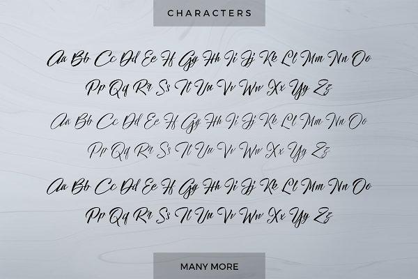 Script fonts page creative market