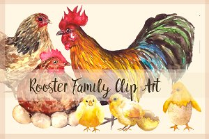 Rooster Family - Watercolor Clip Art