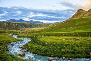 Mountain river stream