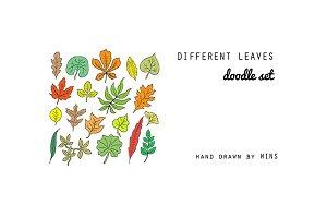 Leaves. Doodle set