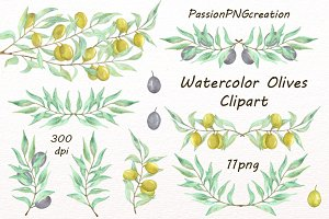 Watercolor Olives Clipart