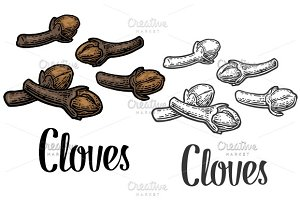 Cloves  vintage engraving