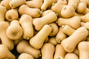 Butternut winter squash