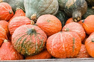 Orange and blue Hubbard squash
