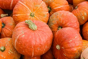 Orange winter squash