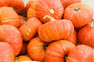 Orange winter squash at market