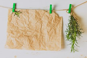 Banch of rosemary and paper hanging on white background