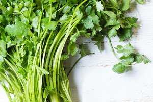 Bunch of fresh cilantro white background. Top view