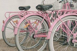 Pink Vintage Bikes