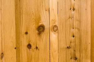 Cedar wood background