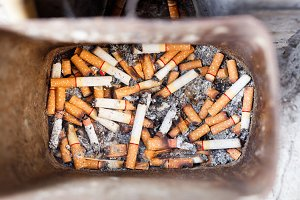 Cigarette butts in trash bin
