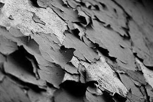 Into the cracks