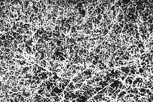 B&W Abstract Texture Backdrop