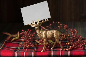 Xmas empty name card, fabric checker