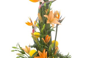 Floral arrangement with Strelitzia