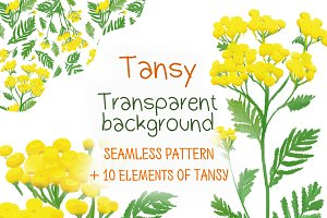 Tansy, seamless pattern