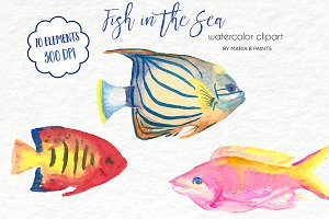 Watercolor Clip Art - Tropical Fish