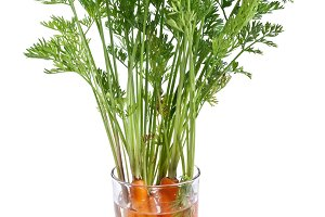 Carrots with leaves standing in a glass of water. Iimage on white background.