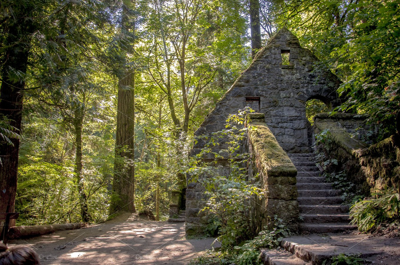 Abandoned building in the woods nature photos creative market - Houses woods nature integrated ...