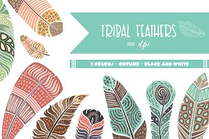 Feathers vector collection.