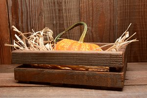 Pumpkin in Wood Crate Barn