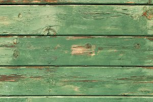Rustic Wood Texture - Green